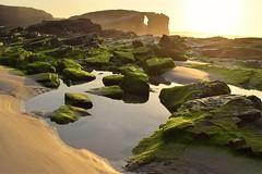 De Verde y Dorado (thoskar) Tags: light sunset sea sun verde green beach water colors atardecer gold mar spain agua nikon rocks cathedral catedral playa galicia lugo rocas goldenhour dorado ribadeo playadelascatedrales d3300