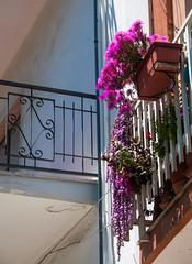 Otranto balcony (dgourmac) Tags: otranto