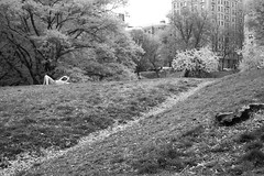 XT1-05-07-15-160 (a.cadore) Tags: nyc newyorkcity blackandwhite bw zeiss landscape candid uptown fujifilm riversidepark uws carlzeiss xt1 biogont2828 zeissbiogon28mmf28 fujifilmxt1
