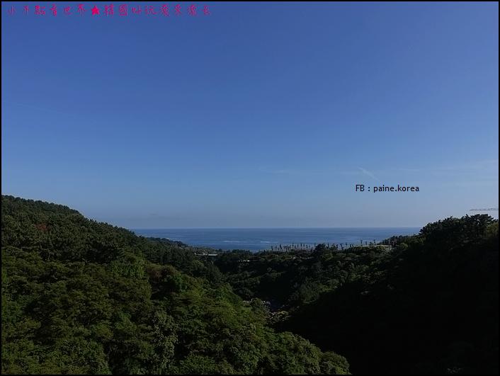 濟州島天帝淵瀑布 (19).JPG