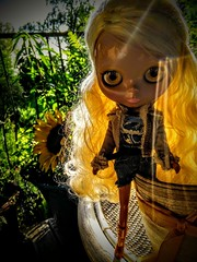 Shannon im Blumentopf 💛🌻
