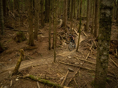 20160607-P6070593.jpg (kendyck1) Tags: mountainbike northshore mtb northvancouver fromme nsride