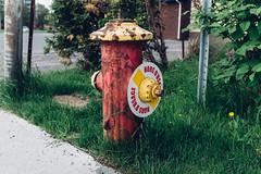 Borne n40 (maximebergeron_photos) Tags: hydrant firehydrant fujix100s