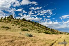 Welch Ranch Path (kevin-palmer) Tags: sheridan wyoming july summer afternoon tamron2470mmf28 nikond750 path circularpolarizer blue sky clouds welchranchrecreationarea