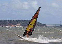 Aug0313a (Mike Millard) Tags: hamworthypark pooleharbour windsurfers