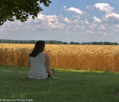 Emiley (NormFox) Tags: wheat canon eos 760d clouds newbie beginner girl