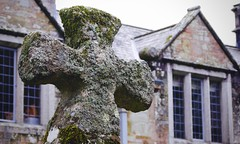 Photo of (Don't be) cross with lichen