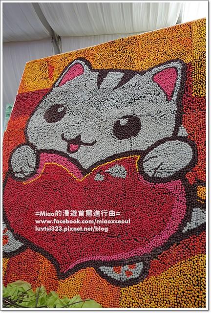 고양국제꽃박람회008
