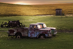 Partners (jackalope22) Tags: auto truck sunrise junk rust farm rustbucket classics trucks heap jalopy workhorse f70