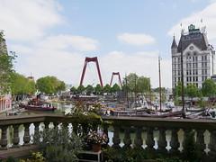 Rotterdam057