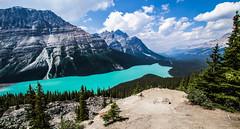 Peyton Turqouise (davidmcyi) Tags: mountain lake canada nature water forest canon view wideangle alberta banff peytolake