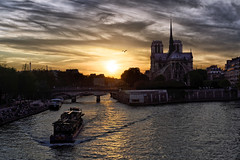The seagull, the boat and the cathedral (marko.erman) Tags: city bridge light sunset sky sun paris france seine architecture clouds contrast reflections river dark evening boat justice eau cityscape cathedral seagull sony horizon palace rivire notredame pont romantic paysage extrieur contrejour iledelacit conciergerie pontdelatournelle