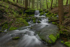 Mill Creek (clare j kaczmarek) Tags: mill creek moss spring laurelhighlands stategamelands patnc