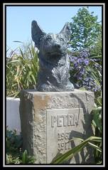 Salford Quays 16. Petra. (Margaret Edge the bee girl) Tags: dog sun statue stone bronze garden manchester outdoors petra salfordquays bbc plinth tvprogramme mediacentre bluepeter