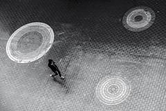 circles (Berkan Byktmbk) Tags: street blackandwhite bw man monochrome rain walking outdoor circles streetphotography fujifilm streetphoto xt1
