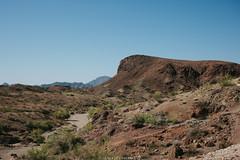 5R6K2434 (ATeshima) Tags: arizona nature havasu