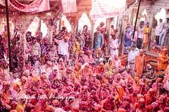 Barsana Nandgaon Lathmar Holi Low res (47 of 136) (Sanjukta Basu) Tags: holi festivalofcolour india lathmarholi barsana nandgaon radhakrishna colours