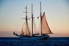Schooner (krys.mcmeekin) Tags: empiresandy toronto cruiseboat lakeontario