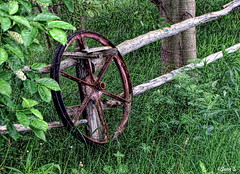 ... (Jean S..) Tags: wheel fence grass trees green rust rusty outdoor island