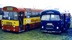 Slide 070-41 (Steve Guess) Tags: abbey bucks buckinghamshire england gb uk bus rally vintage historic woburn london transport hillingdon local 128 bl bristol lh ecw morris marshall