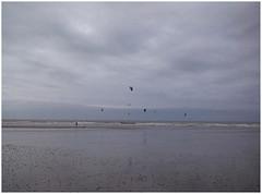 Sea butterflies (michelle@c) Tags: landscape seascape abstraction beach sand ocean sky twilight reflection lowtide marebasse kitesurf hautenormandie smartphone michellecourteau