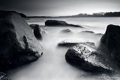 Monochrome Sunrise (renatonovi1) Tags: sunrise beach sea ocean wocks water blackandwhite bw landscape sescape longexposure whalebeach sydney nsw australia