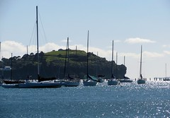 THIS is WINTER in AUCKLAND, New Zealand :) (christineNZ2016) Tags: okahu bay aroundthebays auckland newzealand sun surf sand sea winteraucklandstyle winter northhead devonport