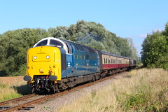 55007 (55022) Ailsworth (NB Railways) Tags: nvr nenevalleyrailway deltic pinza class55 napier finsburyparkdepot englishelectric 55007 eastcoastrevivalweekend 55022