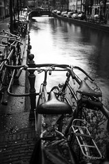 Canaux  vlos (1DSens33) Tags: amsterdam canaux vlos byke bicyclette guidon pdales selle eau hollande paysbas