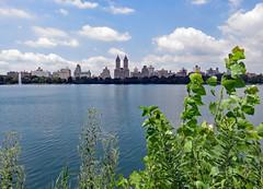 View of the Jacqueline Kennedy Onassis Reservoir (Janne Fairy) Tags: jacqueline kennedy onassis reservoir jacquelinekennedyonassisreservoir lake teich cantral park centralpark newyork new york city america united states usa amerika unitedstatesofamerica