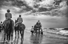 Horsemen (Padmanabhan Rangarajan) Tags: ganeshchathurthi immersion visarjan policeman horses horseman chennai foreshore estate festival