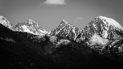 Snowcapped Peaks in Montana (shanecotee) Tags: blackandwhite mountains canon blackwhite montana snowcapped peaks tamron