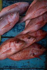 El Tirano (Javier Volcan) Tags: comida pescado parguito carite