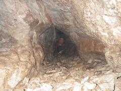 riopar - barranco de los pinos - mayo_2015 (15)