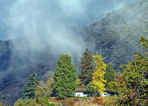 trees usa mist mountains fall clouds america foliage farms lowclouds morningmist oakglenca dgrahamphoto