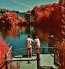 (bill bold II) Tags: london 120 film mediumformat infrared yashicamat124g homedeveloped kodakeir colourinfrared tetenal kodakaerochrome