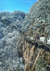 Mount Huangshan (Martin.C_ZJU) Tags: china travel vacation snow nature colors outdoors tourists mount lonelyplanet iphone  mounthuangshan iphoneography