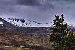 Bleak June in Cairngorm. (Fr Paul Hackett) Tags: snow cairngorm
