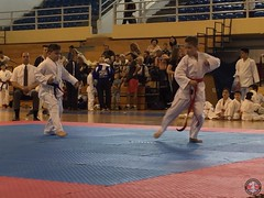 stefanou_15_5_2016_knockdown_200