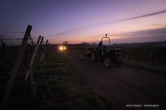 Phares en plein champs (Valou_lilou) Tags: de landscape soleil view lumire champs voiture ciel tracteur couch phares