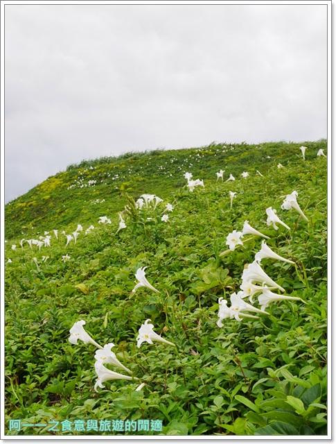 北海岸石門景點.富貴角燈塔.台灣百合.小旅行.踏青步道image028
