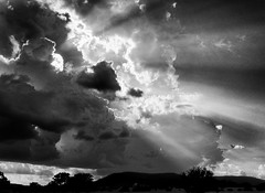 Sky, returning home (flowerweaver) Tags: trees light field landscape rays sunrays