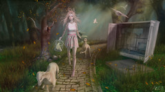 The right path (Anita Armendaiz) Tags: life dog pet love fashion project doll furniture coco fantasy kawaii second anc decorate jian cila pewpew