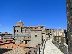 vila (santiagolopezpastor) Tags: espaa wall spain medieval walls espagne middleages muralla castilla vila castillaylen murallas provinciadevila