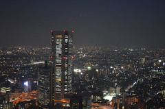 Tokyo dal Metropolitan Government Building (Japan) (grillopotamo82) Tags: japan skyline tokyo grattacielo giappone