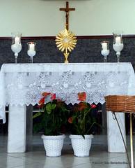 26_mai 2016 CorpusChristi_Penha (23) (Paroquia So Benedito/Bauru) Tags: corpuschristi capela 2016 eucaristia benedito capelansdapenha padrecrepaldi