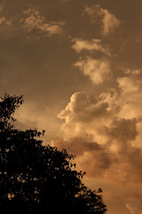 Sky (redmaiko) Tags: sunset storm silhouette clouds thunderstorm