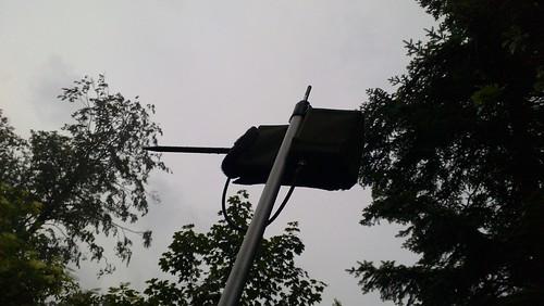 Fledermausschutz