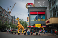 Lego Land (Evan's Life Through The Lens) Tags: life camera city travel summer hot wet glass rain weather clouds vintage lens fun photography drive weird friend warm day teddy minolta cloudy sony 28mm dry sunny adventure f28 2016 a7s
