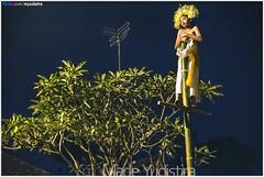 #10 On The Pole (Bali Freelance Photographer) Tags: bali canon nightshot culture sacred tari budaya balinese karangasem sakral dedari madeyudistira sanghyangdedari myudistiraphotography sangdedari